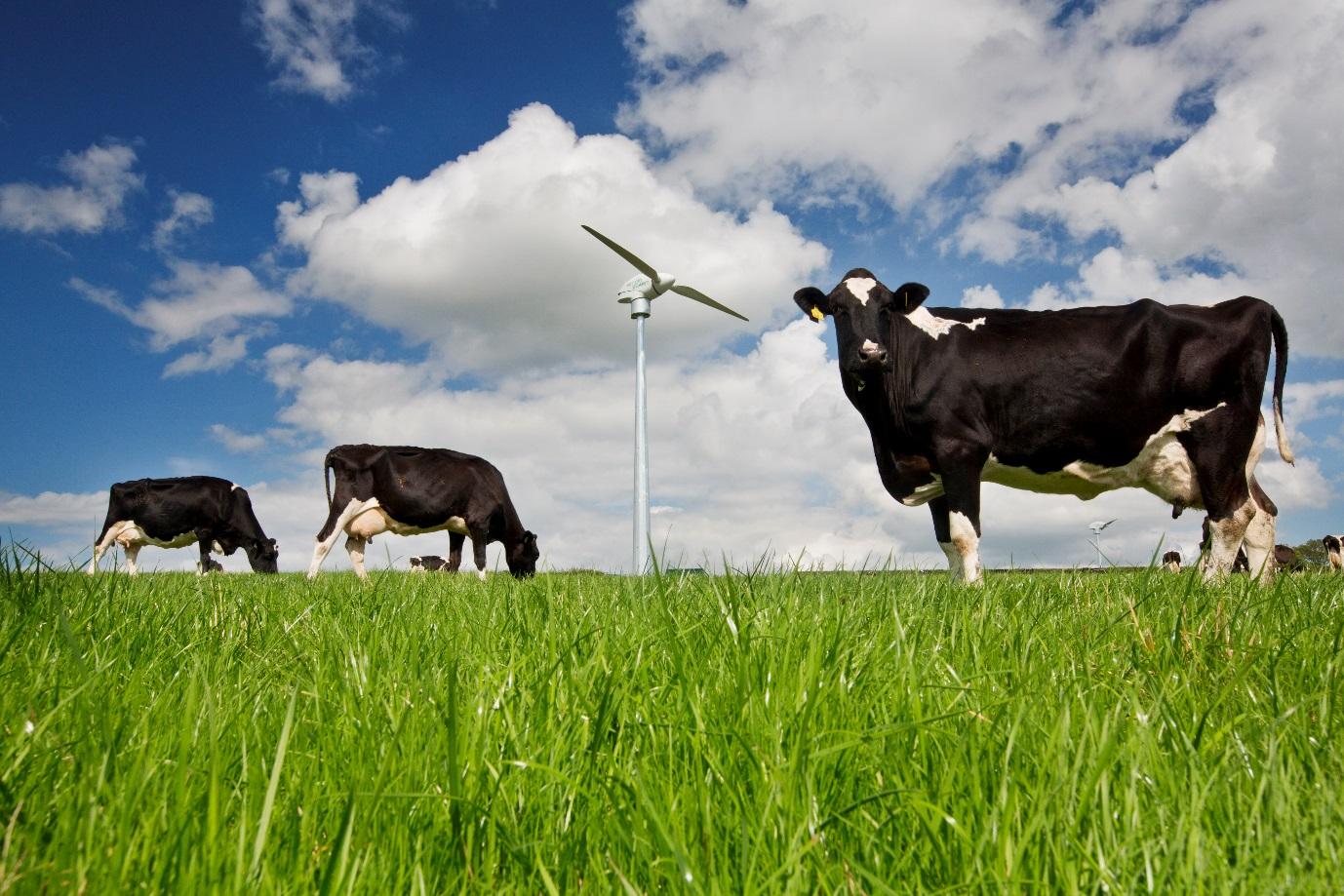 Simple Power: Energising Communications