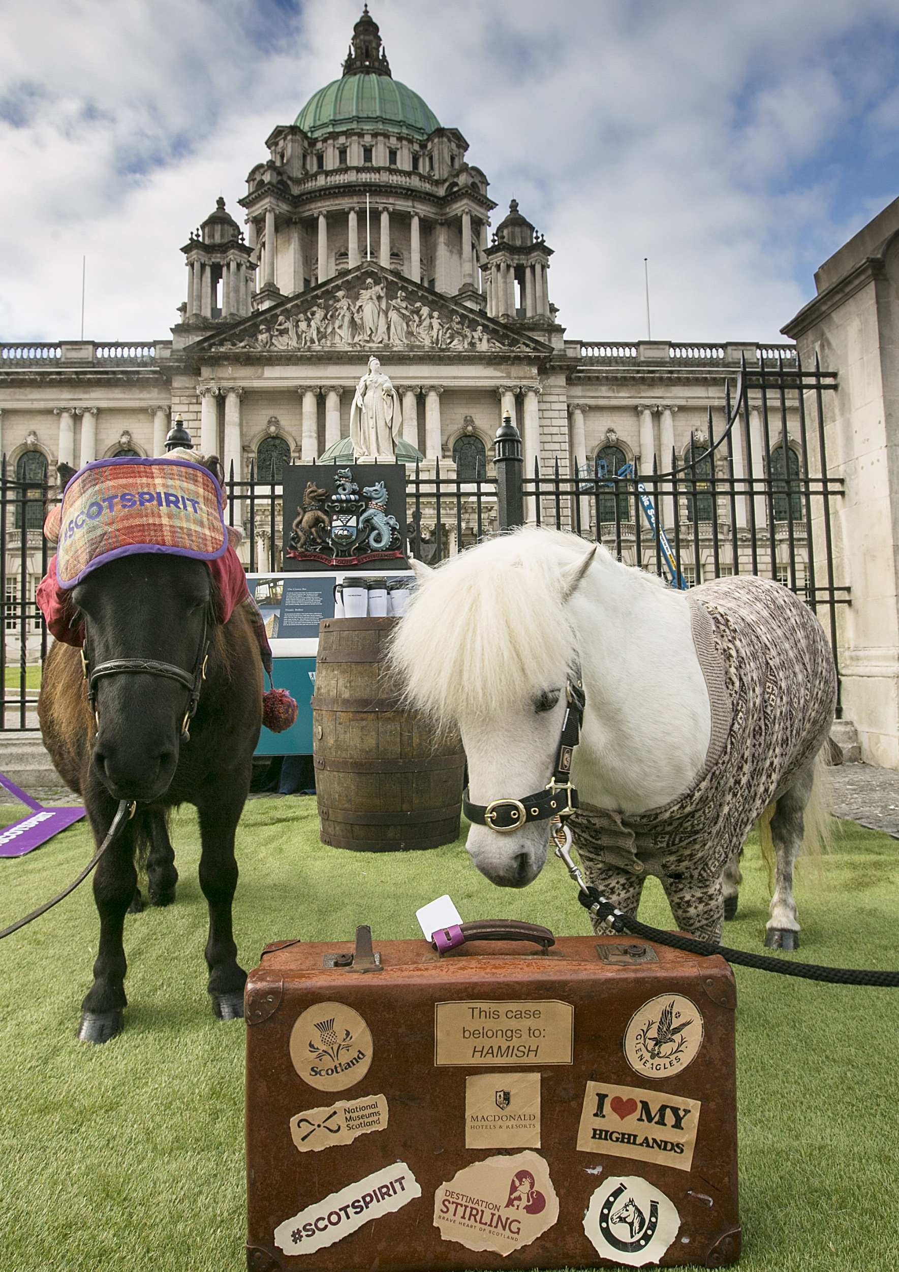 PR - Ponies at Belfast City Hall