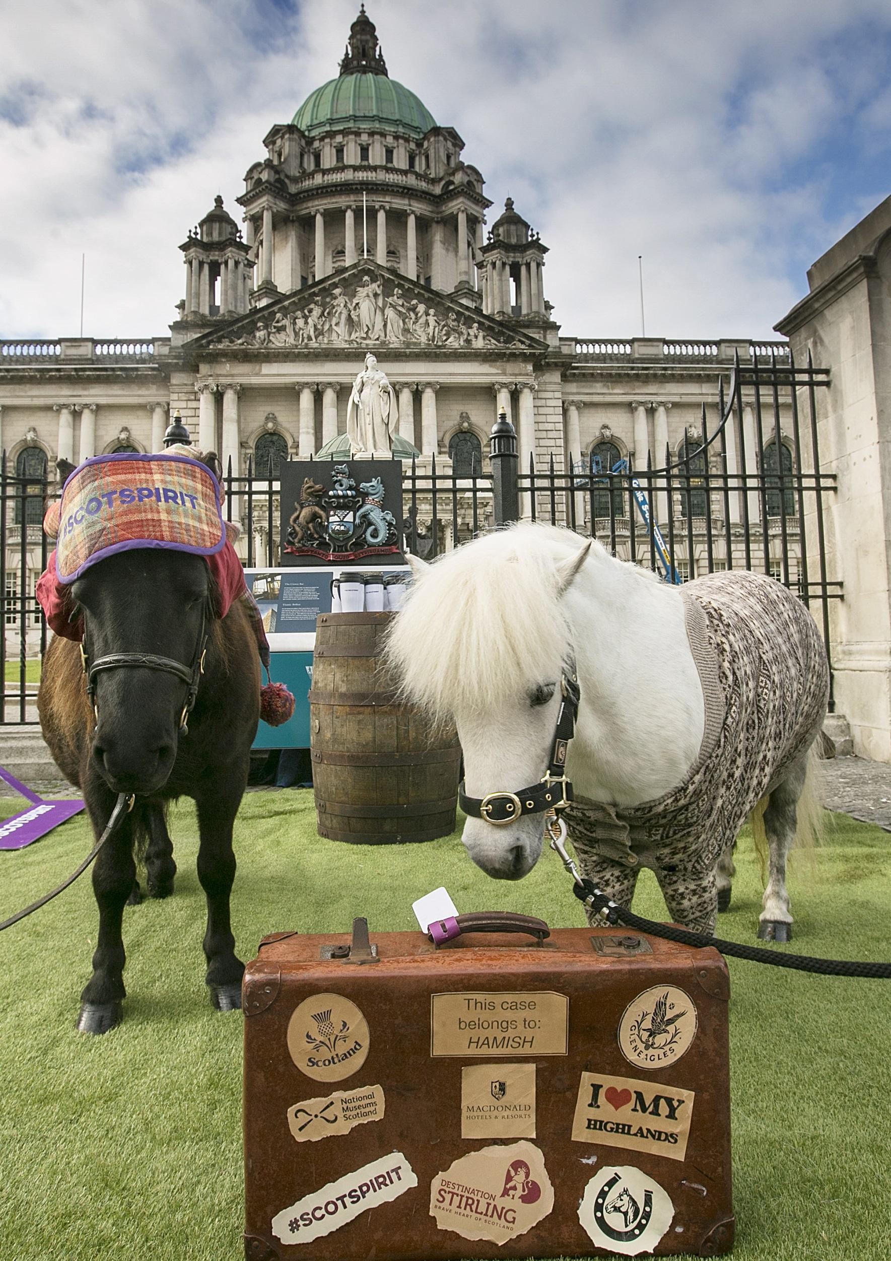 PR - Ponies at Belfast City Hall